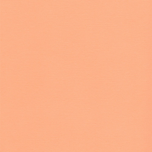 Sandable Textured Cardstock Mango, 12